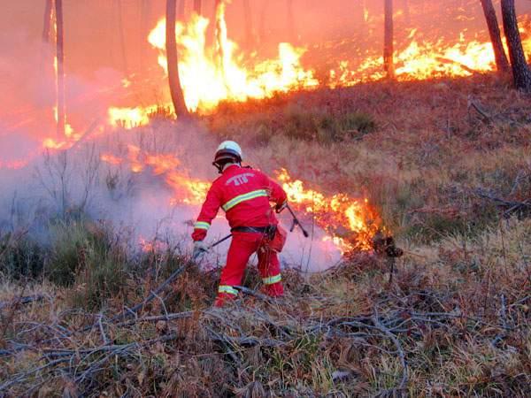 incendio monte Bardellone