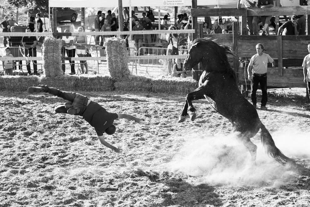 rodeo_J69A5224