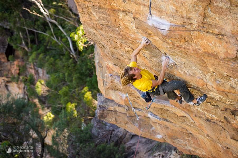 Edward Hamer, Tiger Cat (33), Elphinstone, Blue Mountains, Australia.
