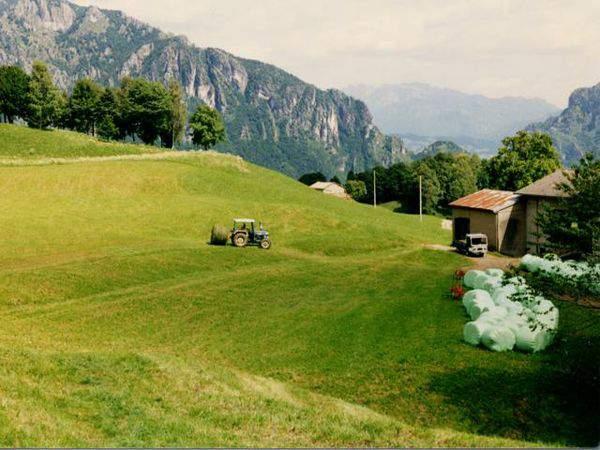 Bidecalogo8-Agricoltura-Bergamo