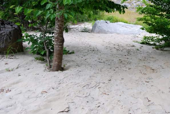 marmettola-cementata-nel-torrente