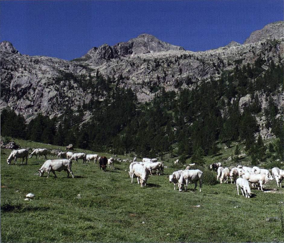 EscursioneCheFai0005