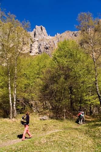 Cresta Sinigaglia, Grigna
