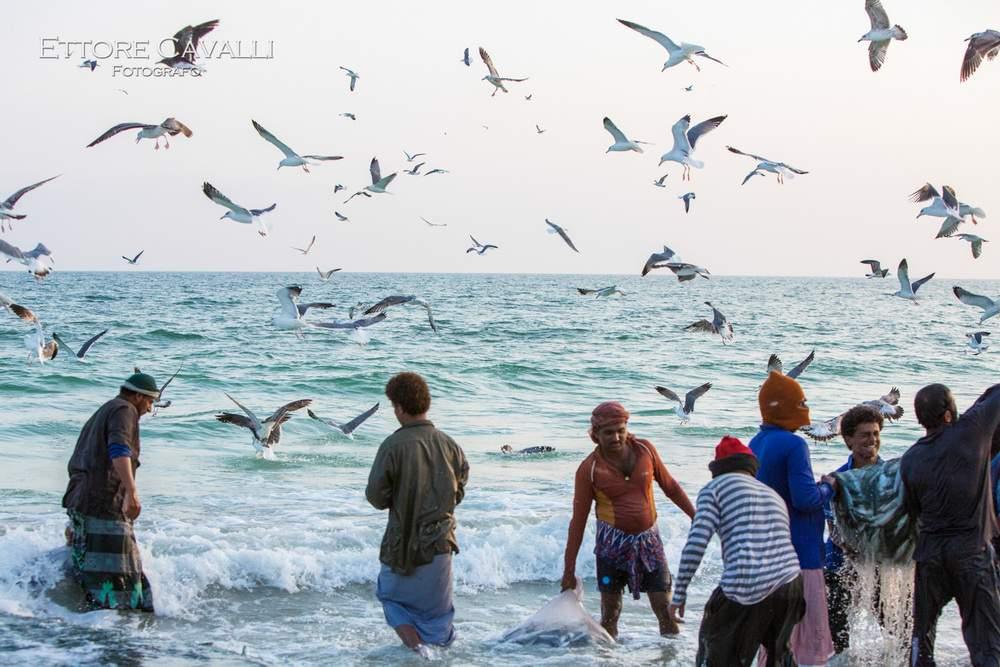 Oman_AV_5818