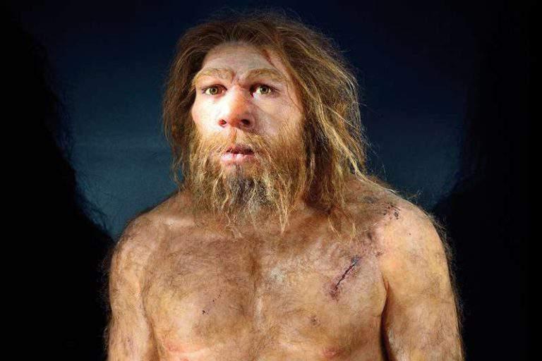 noi-natura-neanderthal-e20an5-800x533-768x512.jpg